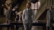 Animais Fantásticos: Os Crimes de Grindelwald Trailer Legendado