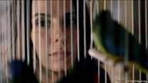 Bird Box Trailer 2 Legendado