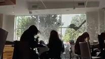 The Vampire Diaries 3ª Temporada Trailer Original