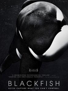 Blackfish - Fúria Animal Trailer Original