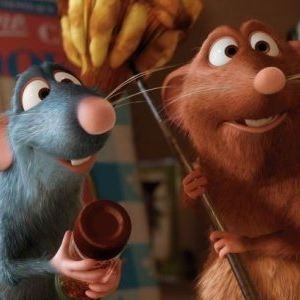 Ratatouille : Foto