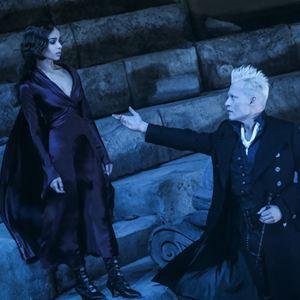 Animais Fantásticos: Os Crimes de Grindelwald : Foto Johnny Depp, Zoë Kravitz