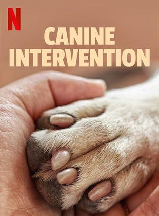 Intervenção Canina