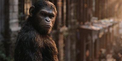 Dicas do Dia: Planeta dos Macacos: A Guerra é o destaque de hoje