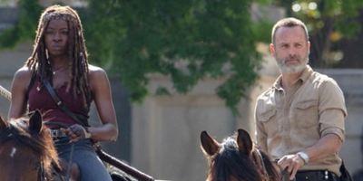 The Walking Dead anuncia box especial em comemoração aos 15 anos das HQs