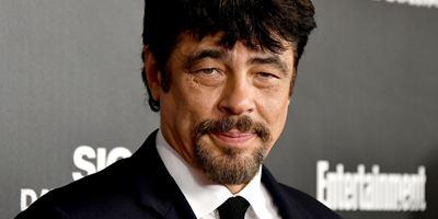 Benicio Del Toro vai estrelar novo filme de Oliver Stone
