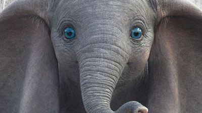 Dumbo: Cartazes individuais trazem estrelas de Hollywood e um elefante fofo