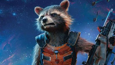 Morre Mr. Oreo, guaxinim que serviu de base para o Rocket Raccoon