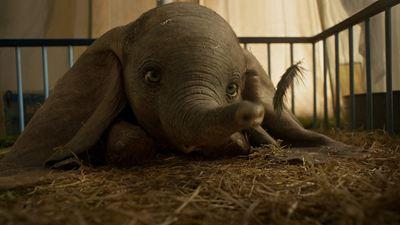 Bilheterias Estados Unidos: Mesmo com pouco fôlego, Dumbo voa mais alto que seus rivais