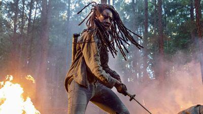 San Diego Comic-Con 2019: Danai Gurira confirma saída de The Walking Dead na 10ª temporada