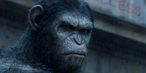 Bilheterias Brasil: Planeta dos Macacos leva mais de um milhão de espectadores aos cinemas