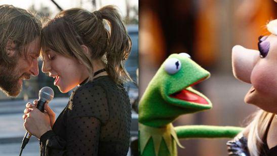 Nasce uma Estrela: Lady Gaga é substituída por Miss Piggy em versão do trailer com os Muppets