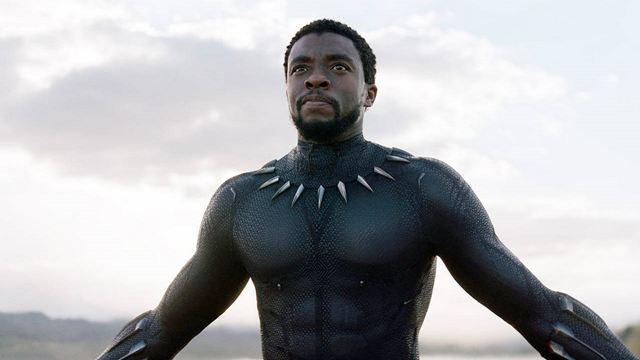 Pantera Negra: Quem vai assumir o manto do herói nos cinemas?