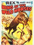 O Rei dos Cavalos Selvagens