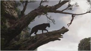 Novo trailer de Mogli - O Menino Lobo impressiona pelo realismo nas cenas da floresta