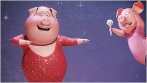 Animais soltam a voz em novo trailer legendado de Sing - Quem Canta Seus Males Espanta