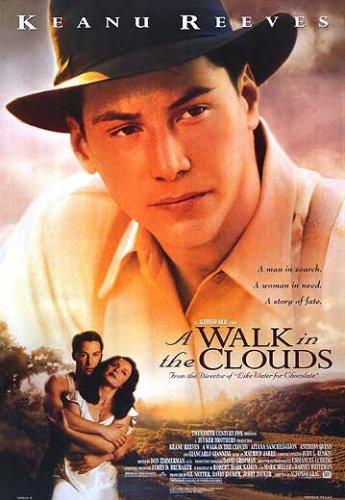 filme caminhando nas nuvens legendado