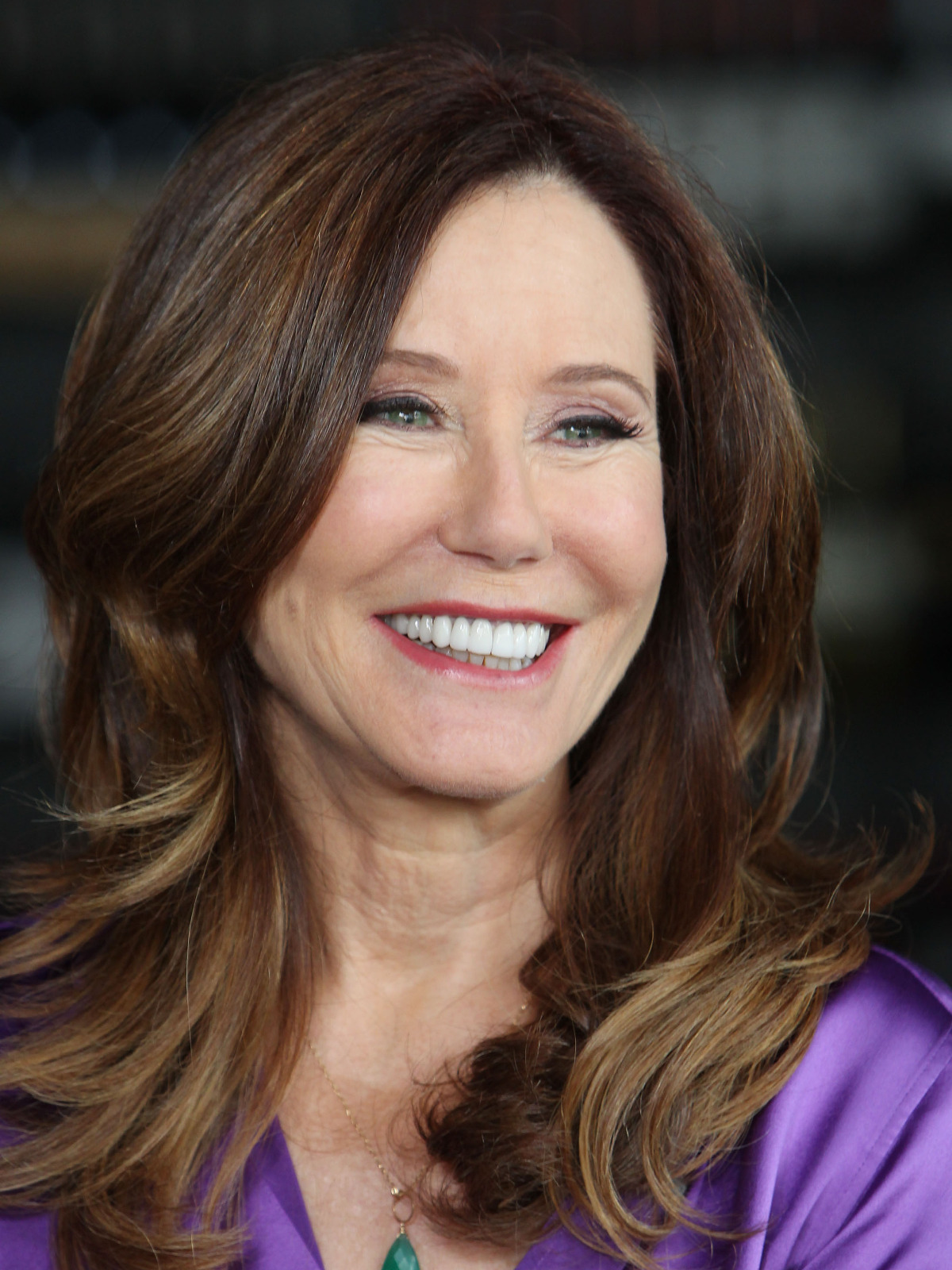 Mary Mcdonnell Filme