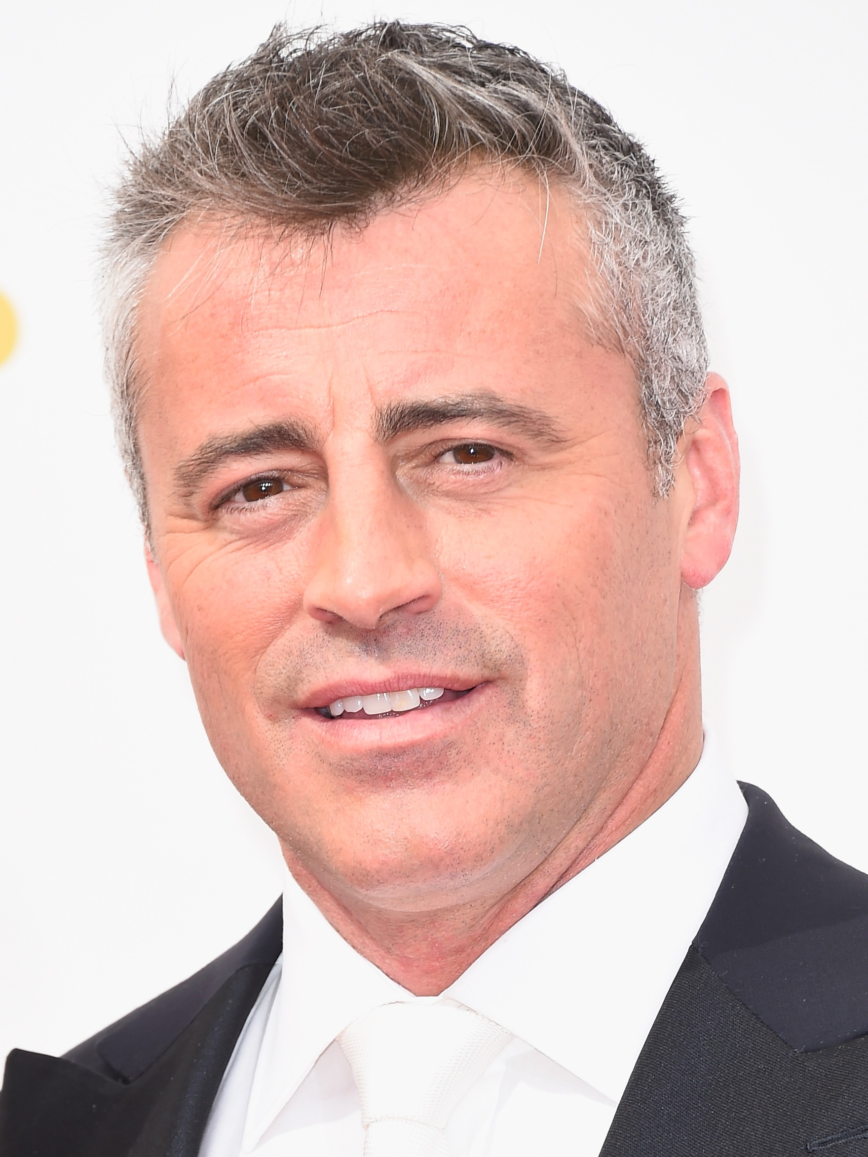 fotos de matt leblanc adorocinema. Black Bedroom Furniture Sets. Home Design Ideas