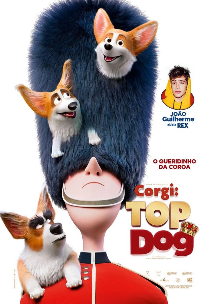 Corgi Top Dog Filme 2018 Adorocinema