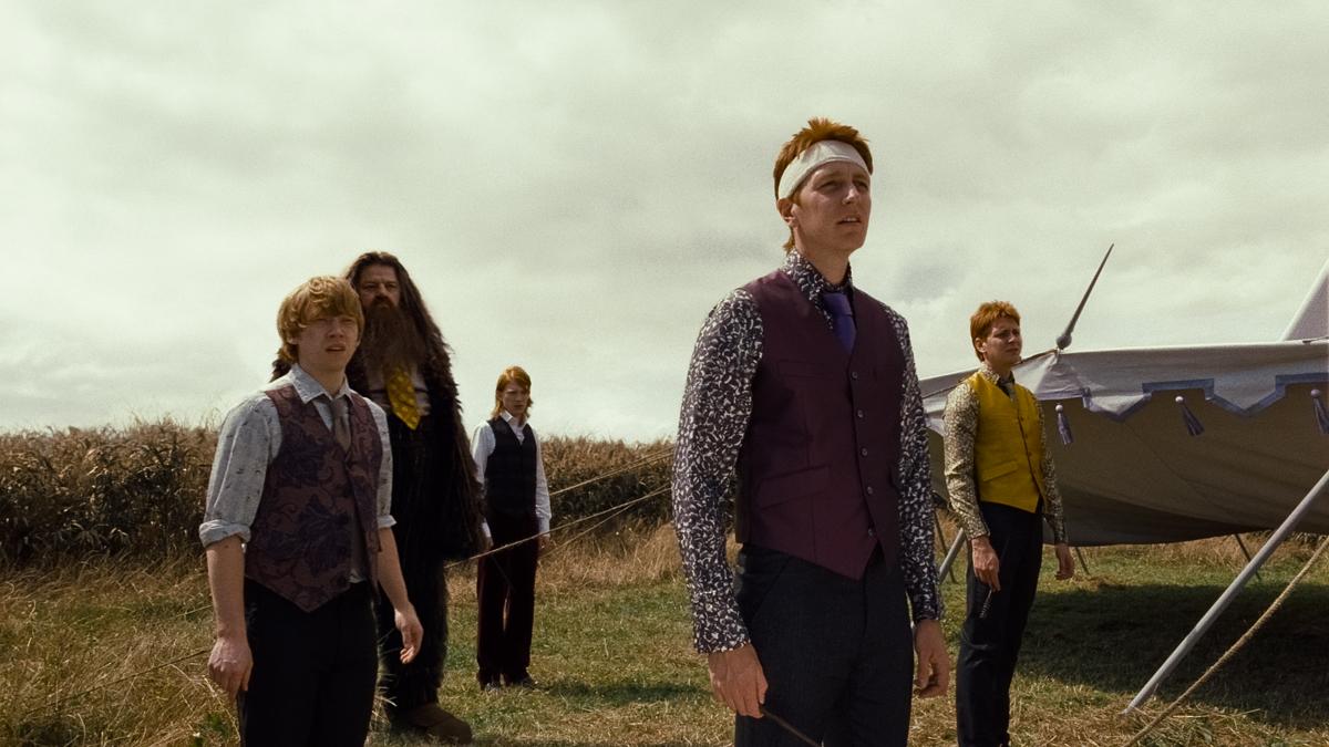 Harry Potter e as Relíquias da Morte - Parte 1 : Foto Domhnall Gleeson, James Phelps, Oliver Phelps, Robbie Coltrane, Rupert Grint