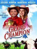 O Grande Campeão : Poster