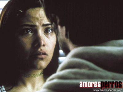 Amores Brutos : Foto