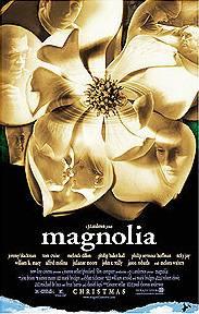 Magnólia : Foto