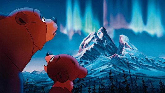 Irmão Urso : Foto