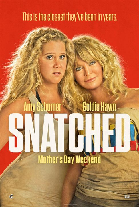 Snatched : Poster