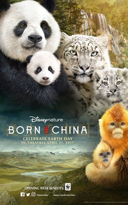 Born In China : Poster