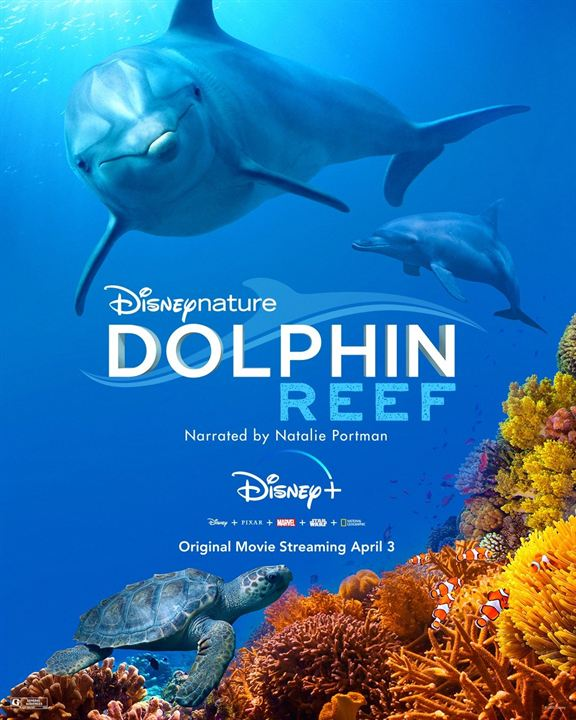 Dolphin Reef : Poster