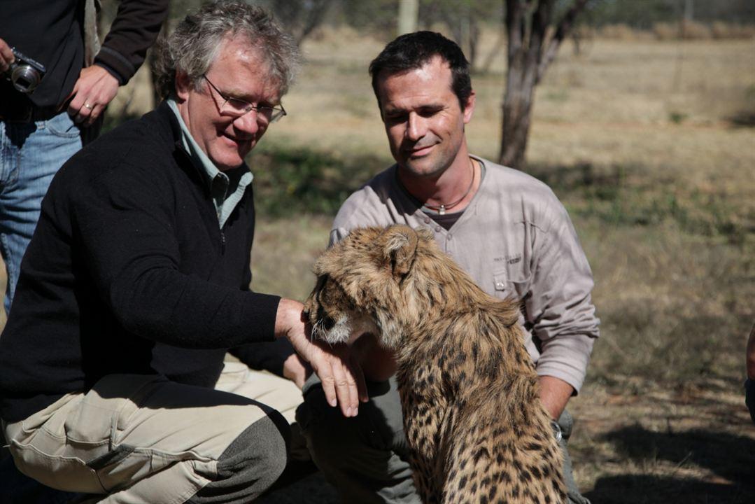 Safári na África : Foto Ben Stassen, Kevin Richardson (II)