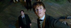Oscar 2017: Animais Fantásticos e Onde Habitam ganha o primeiro prêmio da franquia Harry Potter