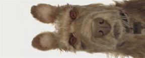 Isle Of Dogs: Animação em stop motion dirigida por Wes Anderson ganha teaser