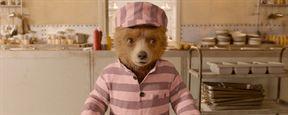 Paddington 2 bate recorde de aprovação no Rotten Tomatoes