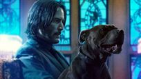 John Wick 3 - Parabellum: Keanu Reeves, Halle Berry e belos cachorros estampam cartazes individuais