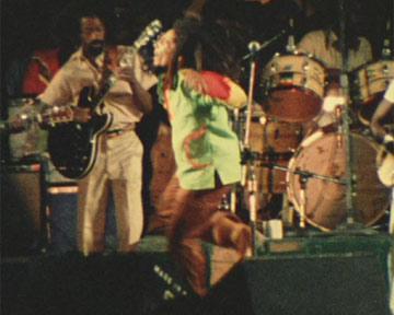 Marley Trailer Original