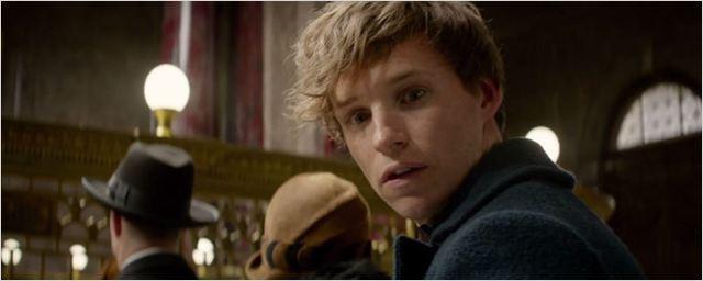 Animais Fantásticos e Onde Habitam: J.K. Rowling apresenta Newt Scamander em vídeo cheio de cenas inéditas