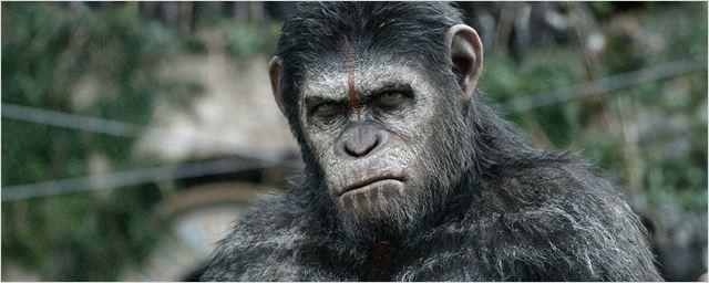 War for the Planet of the Apes será marcado por um conflito mortal entre homens e símios, revela sinopse