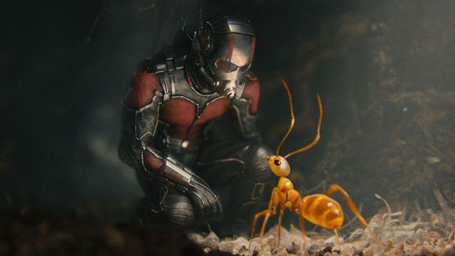Dicas do Dia: Homem-Formiga e O Impossível são os destaques