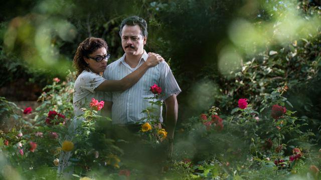 Predestinado: Drama com Danton Mello e Juliana Paes ganha primeiro trailer