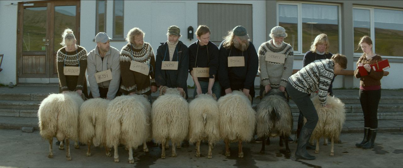 A Ovelha Negra : Foto Sigurður Sigurjónsson, Theodór Júlíusson